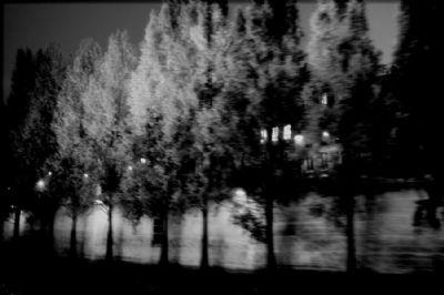 Seine Night