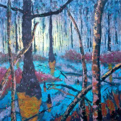 Swampland 1