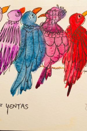 Yentas (Birds)  on a Wire