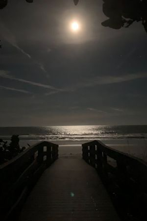 Reflecting Waves - Snow Moon